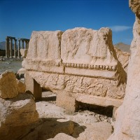 http://www.donatellabernardi.ch/files/gimgs/th-49_26112014-001061240004_Palmyra_03.jpg