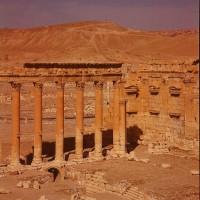 http://www.donatellabernardi.ch/files/gimgs/th-49_26112014-001061250007_Palmyra_04.jpg